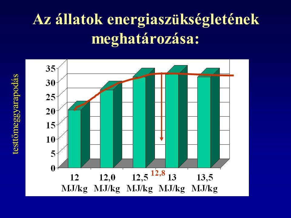 Az állatok energiaszükségletének meghatározása: