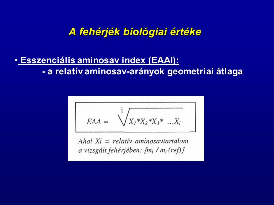 A fehérjék biológiai értéke
