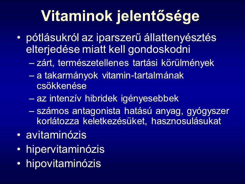 Vitaminok jelentősége