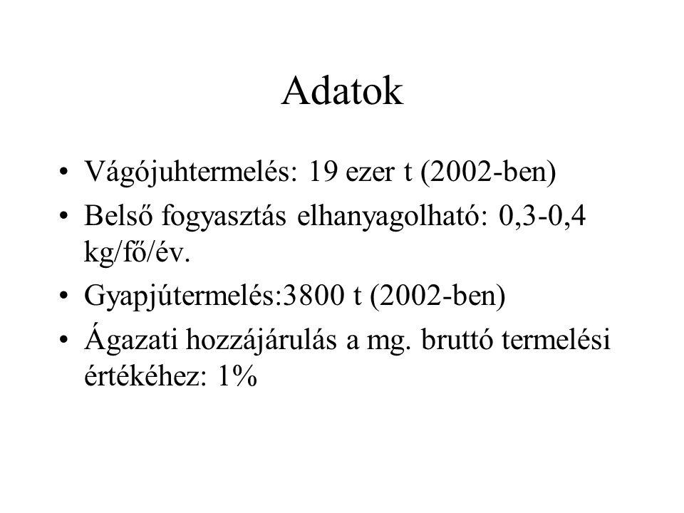 Adatok Vágójuhtermelés: 19 ezer t (2002-ben)