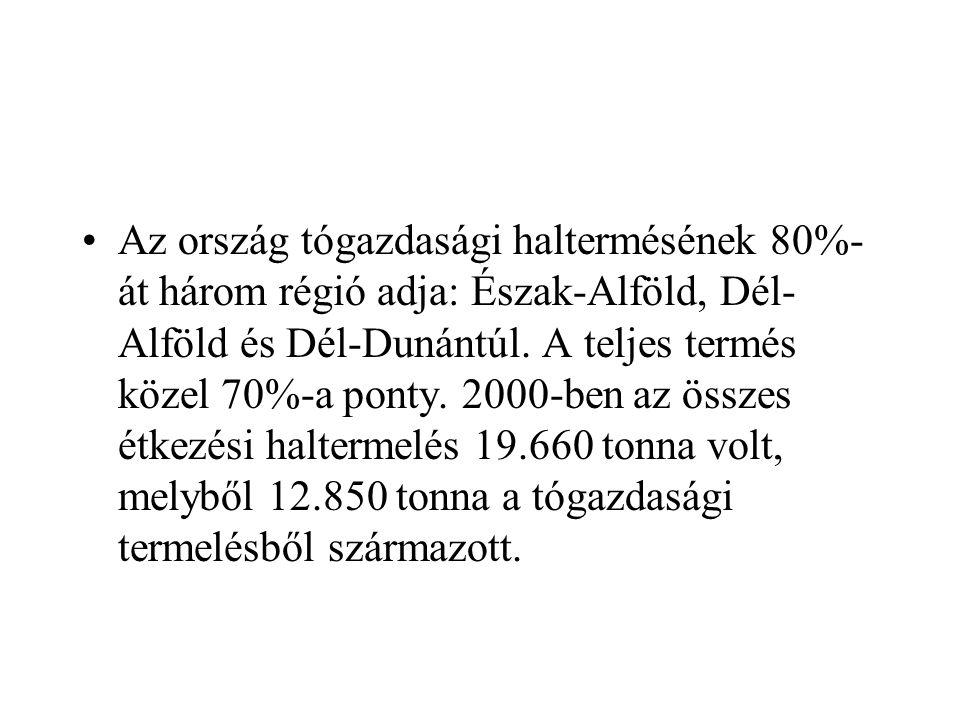 Az ország tógazdasági haltermésének 80%-át három régió adja: Észak-Alföld, Dél-Alföld és Dél-Dunántúl.