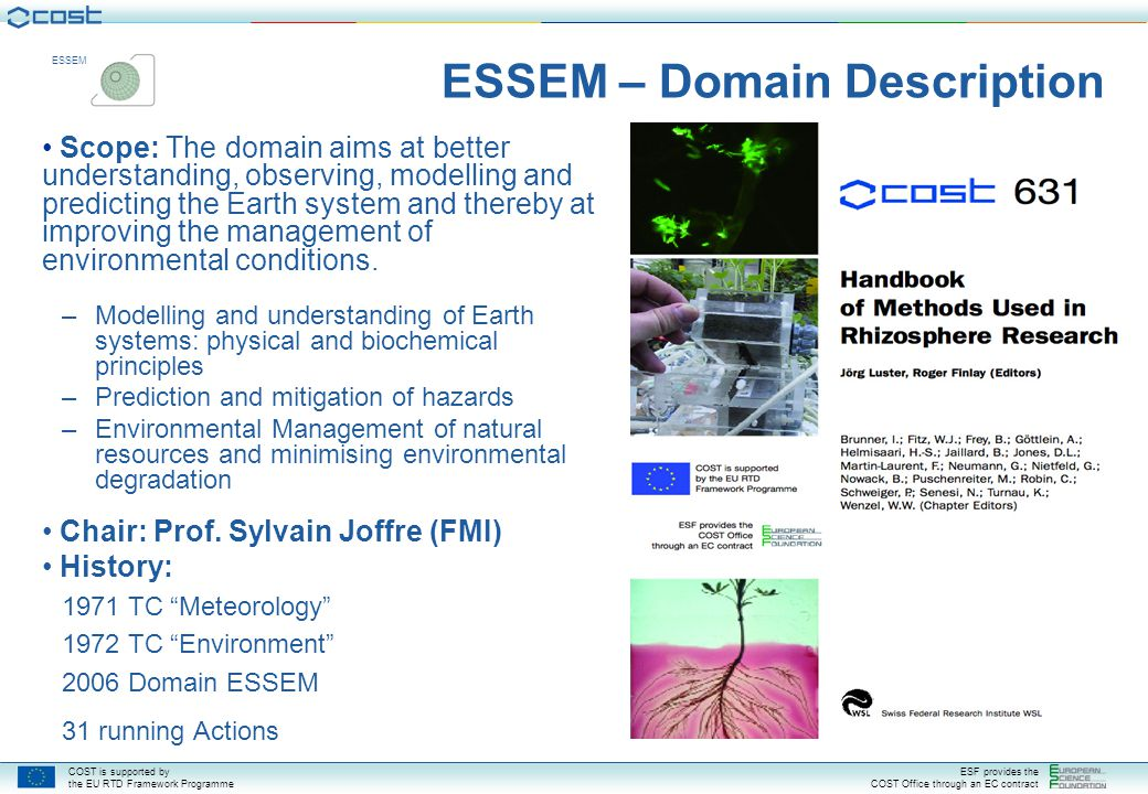 ESSEM – Domain Description