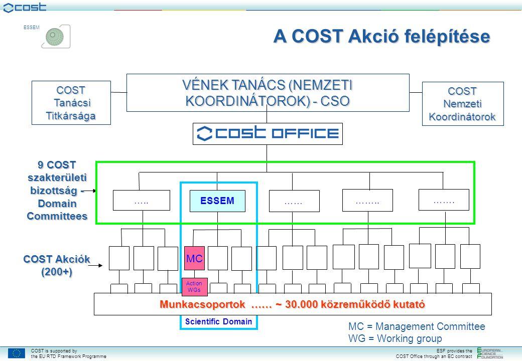 A COST Akció felépítése