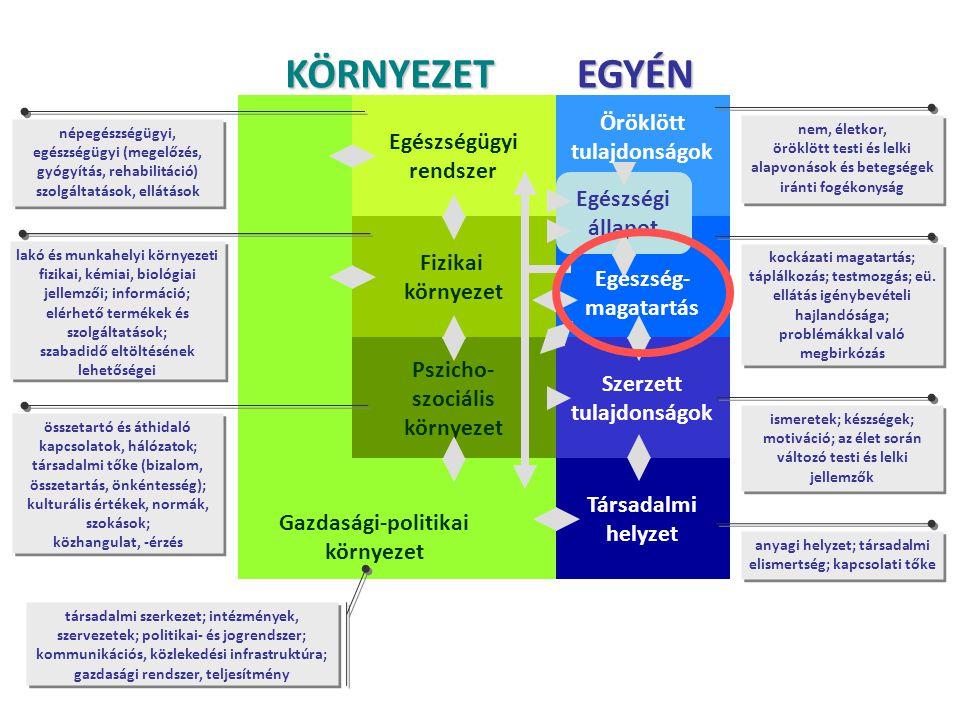Gazdasági-politikai környezet