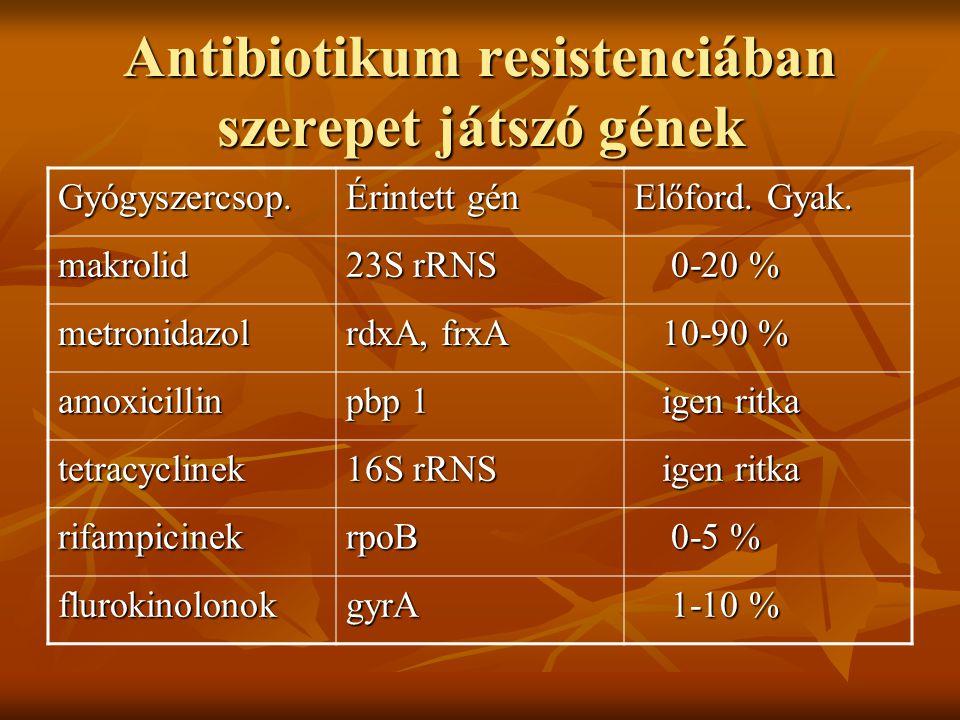 Antibiotikum resistenciában szerepet játszó gének