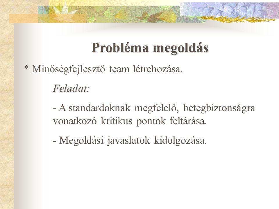 Probléma megoldás * Minőségfejlesztő team létrehozása. Feladat: