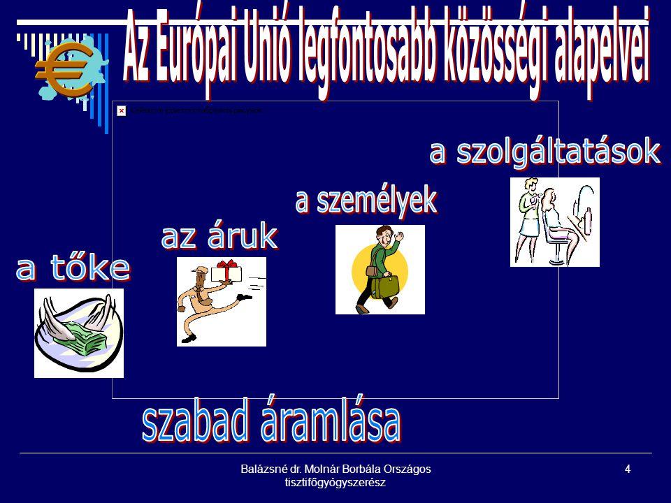Az Európai Unió legfontosabb közösségi alapelvei