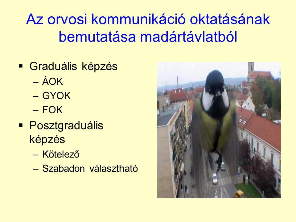 Az orvosi kommunikáció oktatásának bemutatása madártávlatból