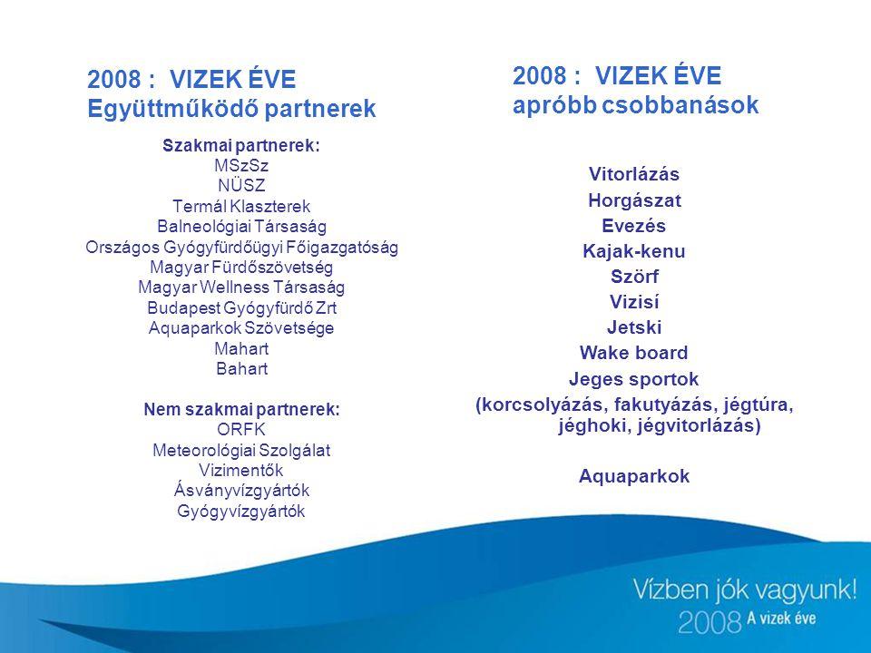 2008 : VIZEK ÉVE apróbb csobbanások