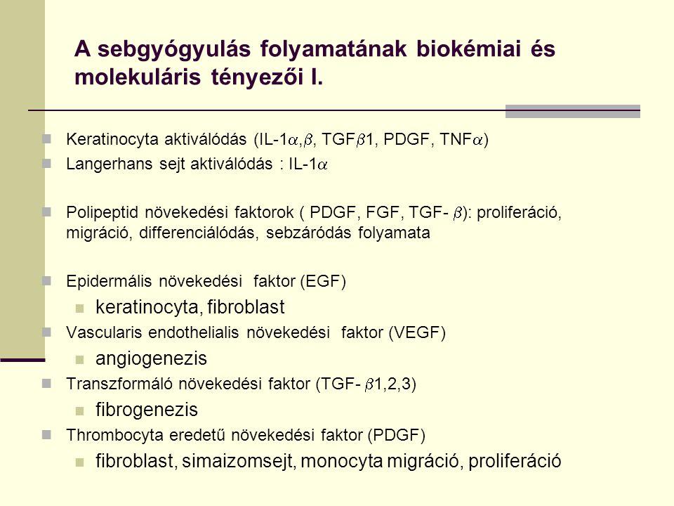 A sebgyógyulás folyamatának biokémiai és molekuláris tényezői I.