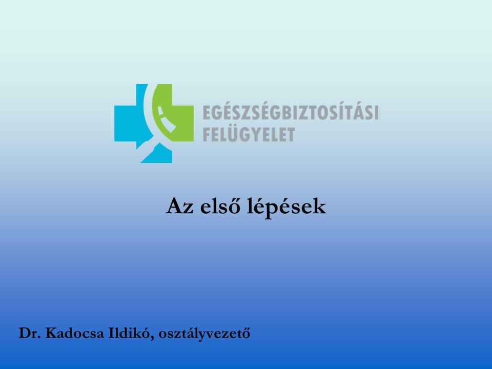 Az első lépések Dr. Kadocsa Ildikó, osztályvezető