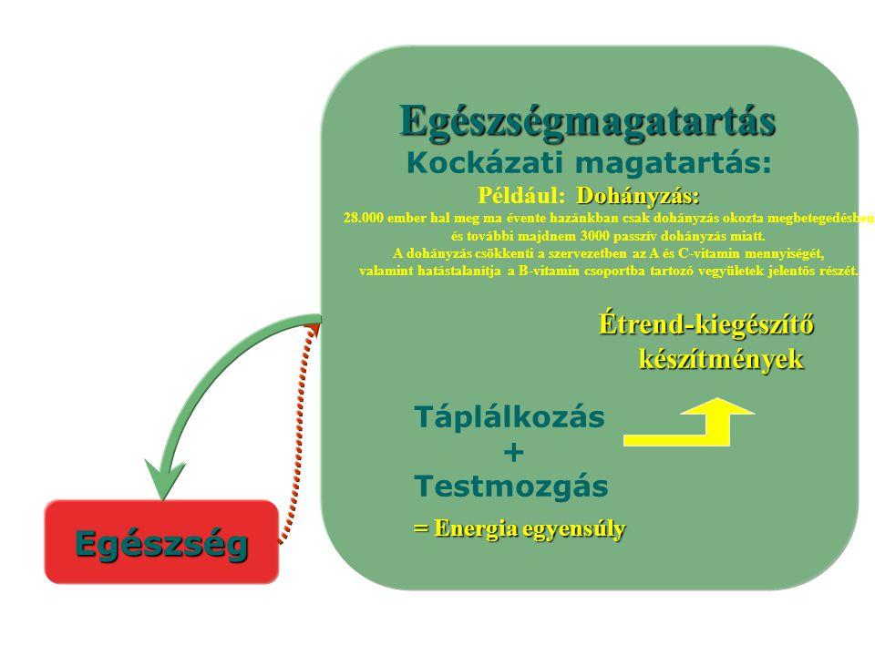 Egészségmagatartás Egészség Kockázati magatartás: készítmények