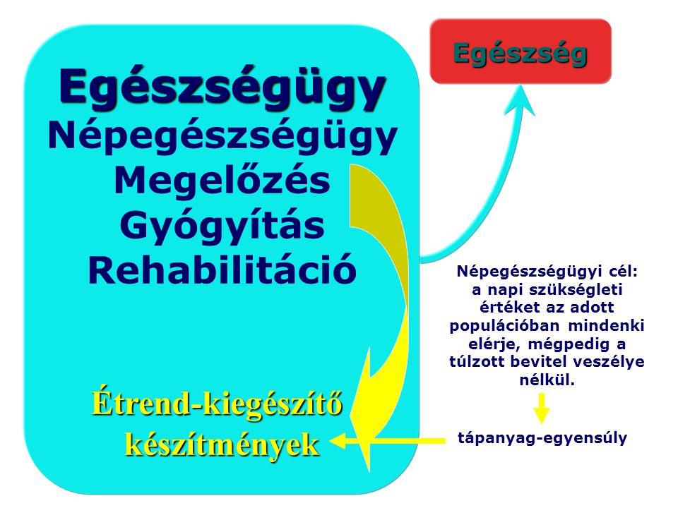 Egészségügy Népegészségügy Megelőzés Gyógyítás Rehabilitáció