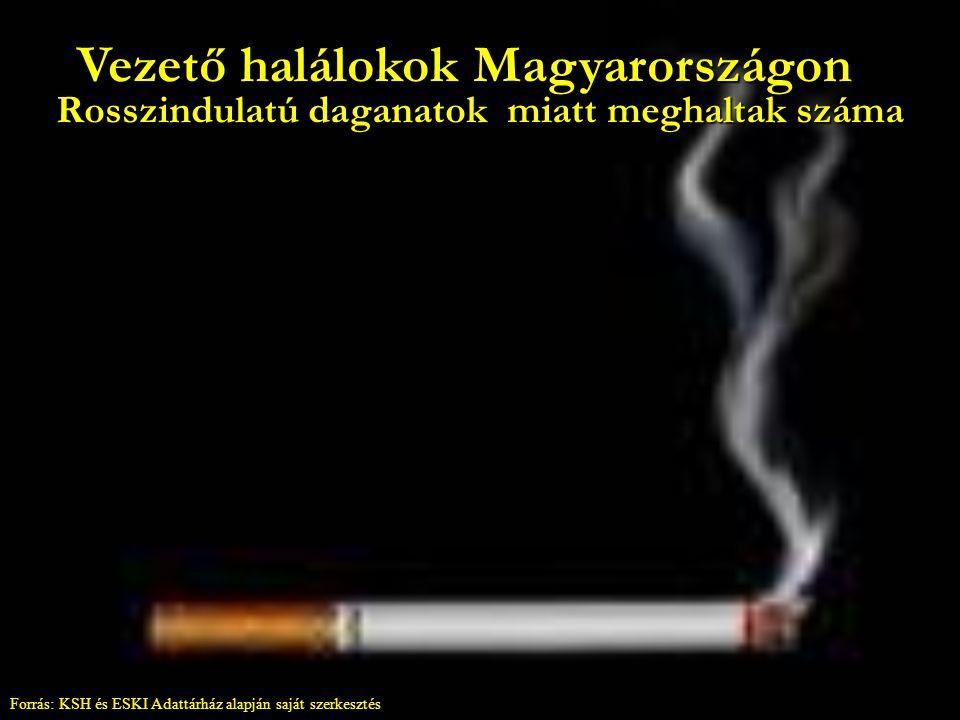 Vezető halálokok Magyarországon