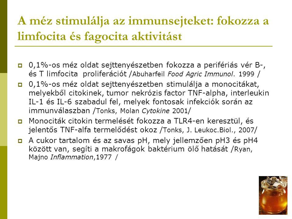 A méz stimulálja az immunsejteket: fokozza a limfocita és fagocita aktivitást