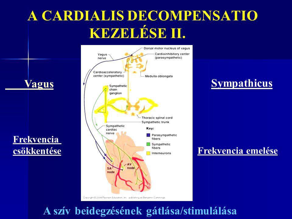 A CARDIALIS DECOMPENSATIO KEZELÉSE II.