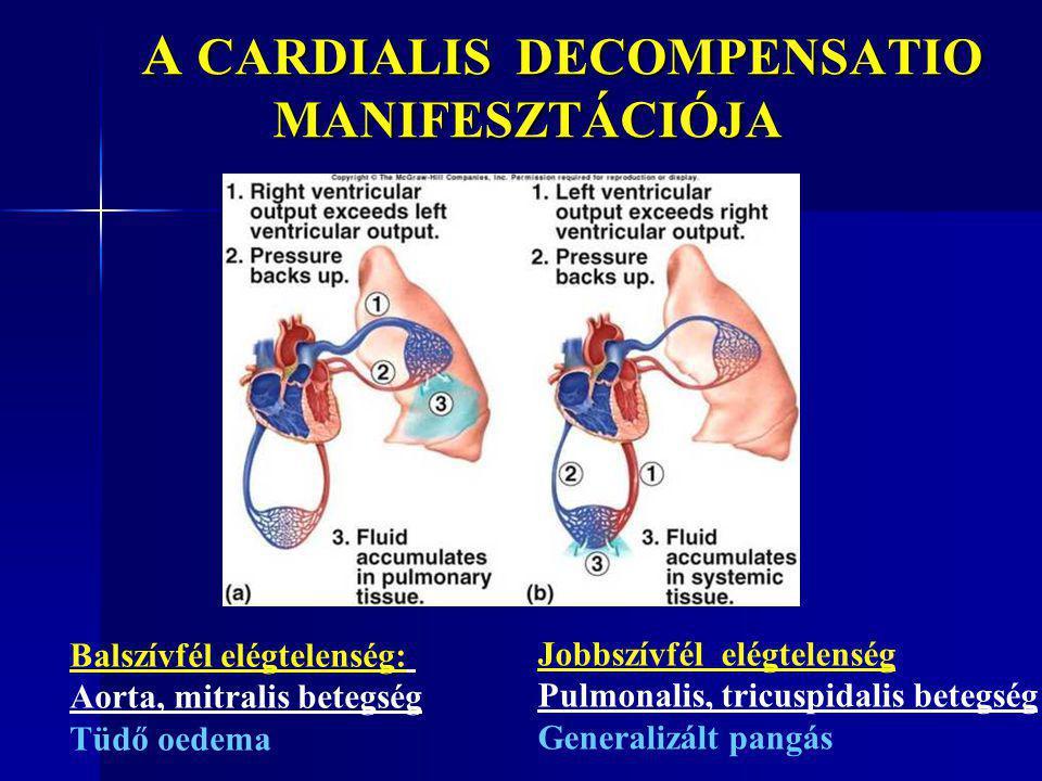 A CARDIALIS DECOMPENSATIO MANIFESZTÁCIÓJA