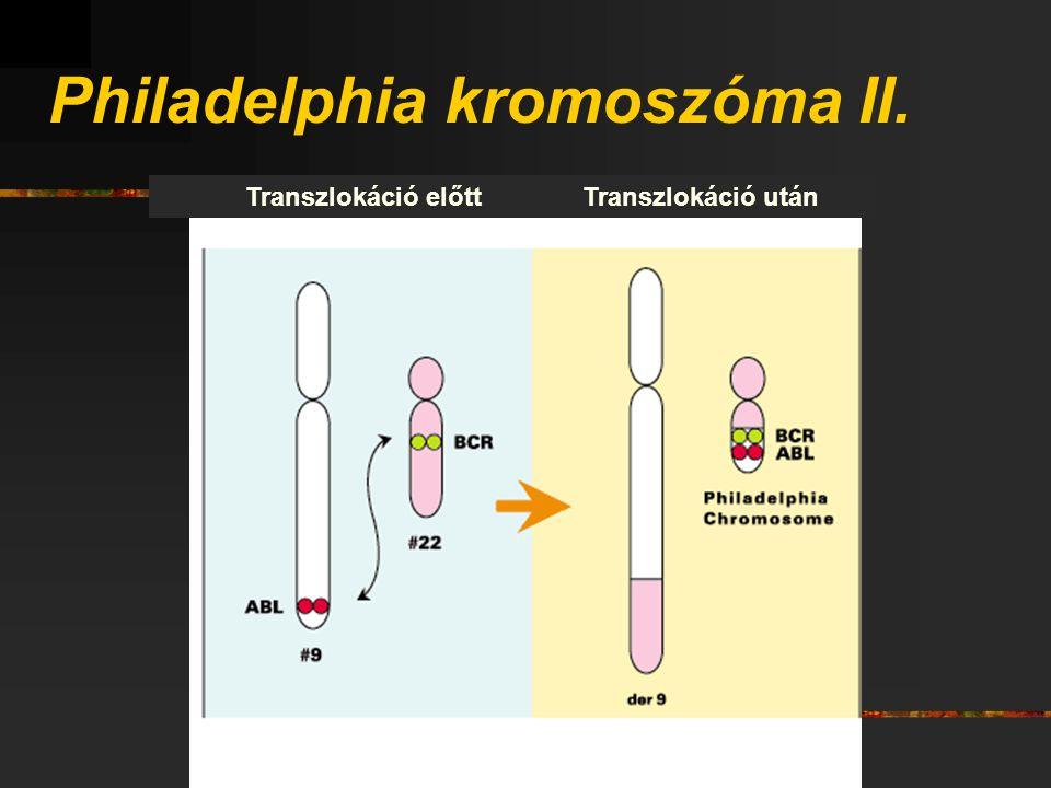 Philadelphia kromoszóma II.