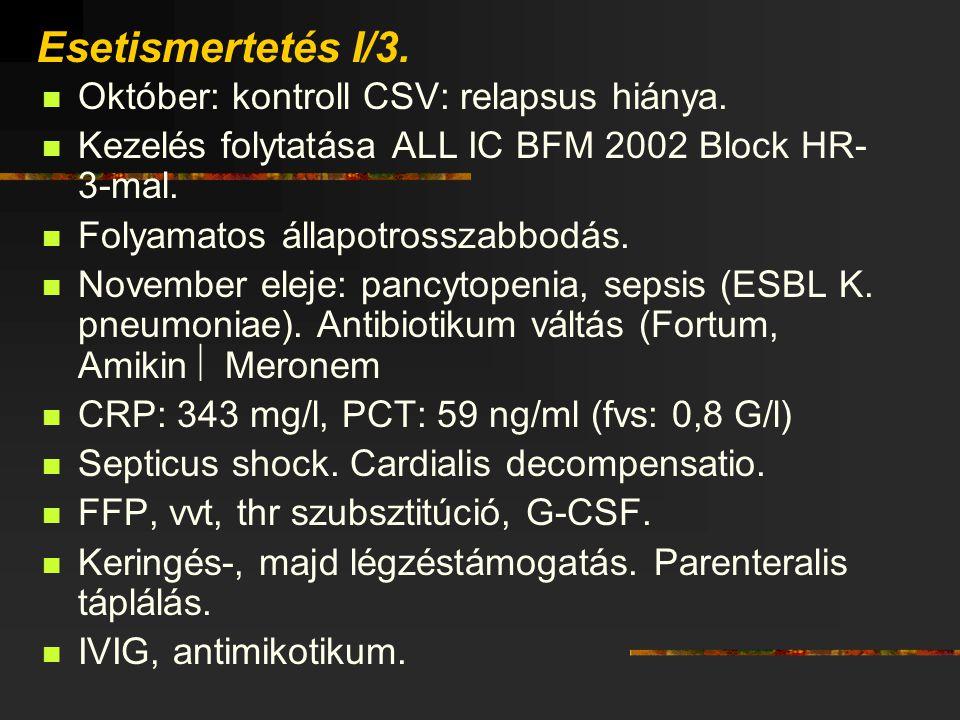 Esetismertetés I/3. Október: kontroll CSV: relapsus hiánya.