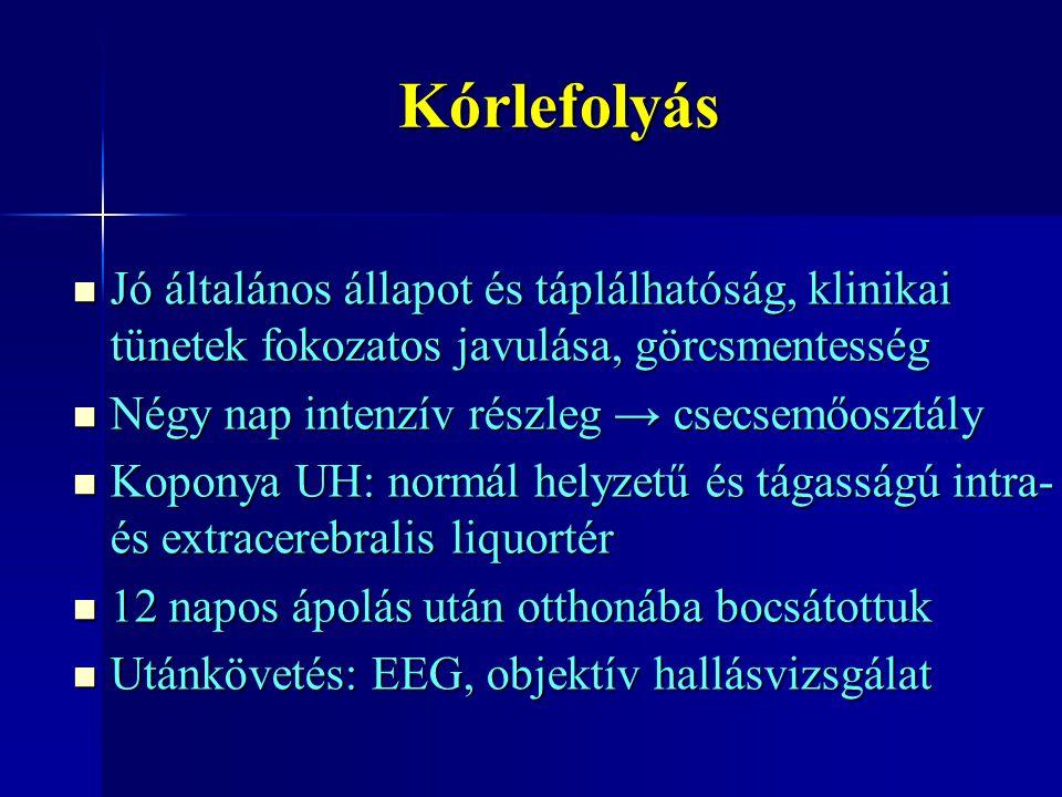 Kórlefolyás Jó általános állapot és táplálhatóság, klinikai tünetek fokozatos javulása, görcsmentesség.