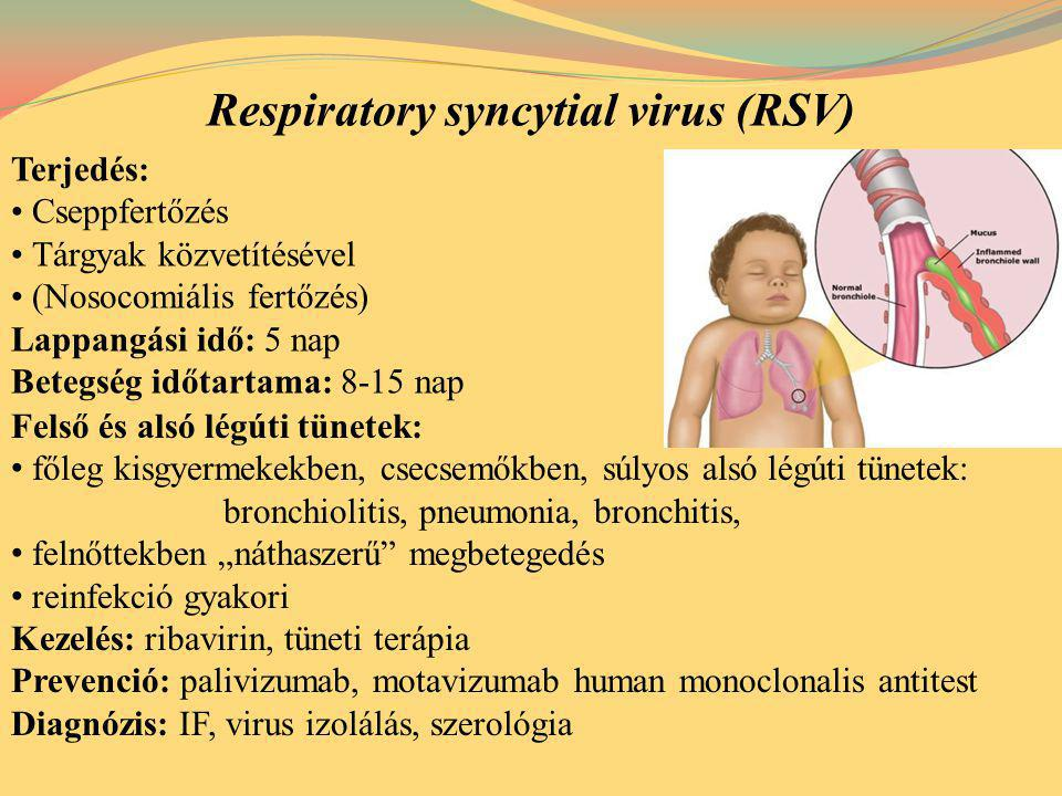 Respiratory syncytial virus (RSV)