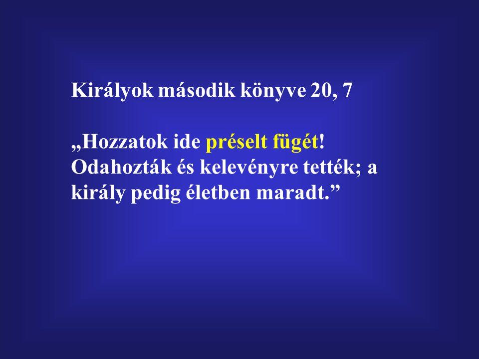 Királyok második könyve 20, 7