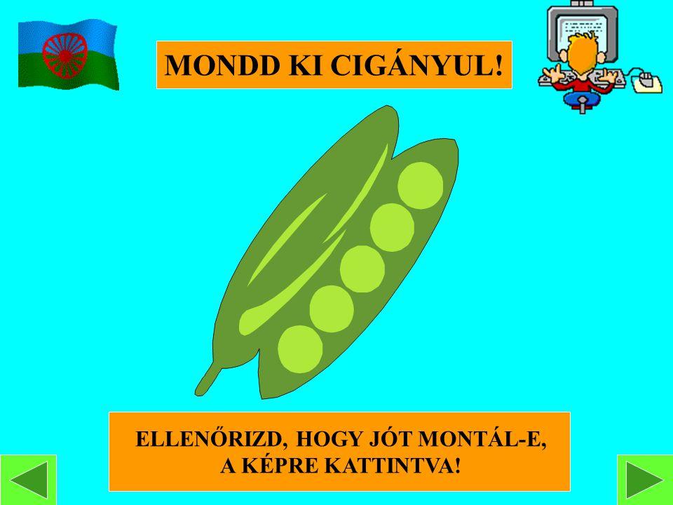 ELLENŐRIZD, HOGY JÓT MONTÁL-E,