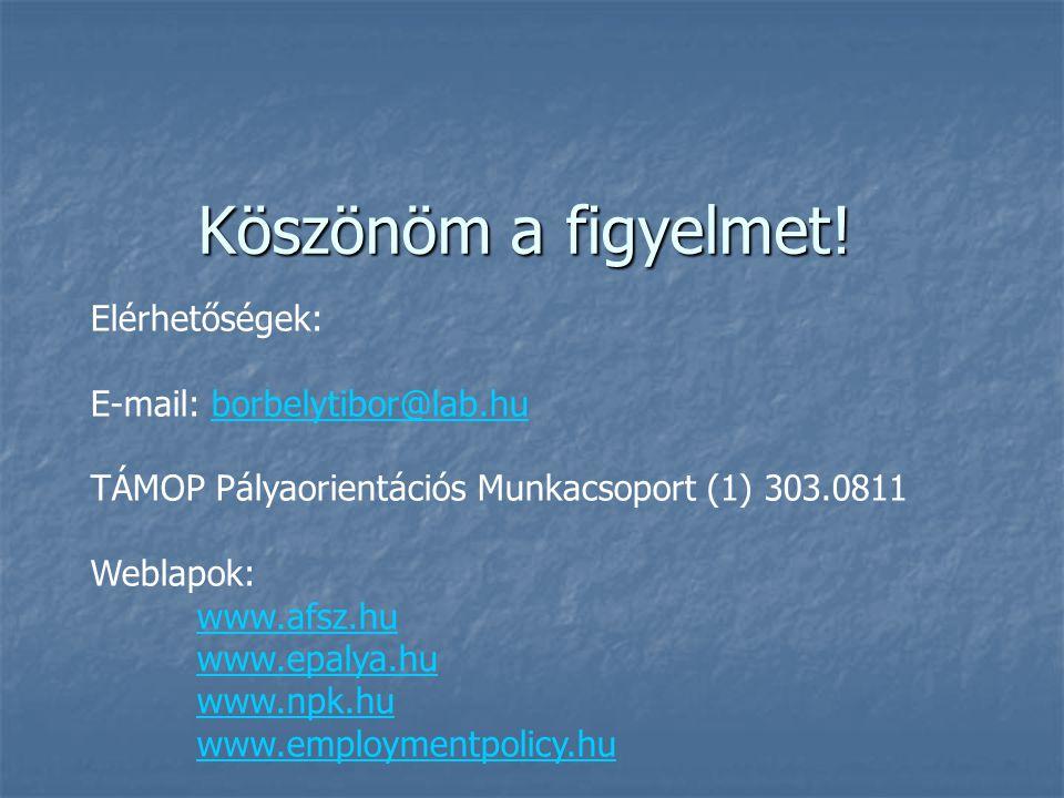 Köszönöm a figyelmet! Elérhetőségek: E-mail: borbelytibor@lab.hu