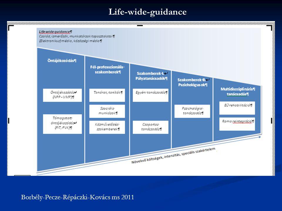 Life-wide-guidance Borbély-Pecze-Répáczki-Kovács ms 2011