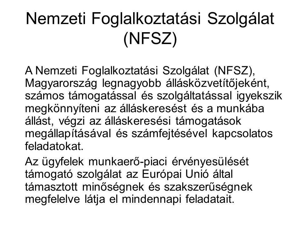 Nemzeti Foglalkoztatási Szolgálat (NFSZ)