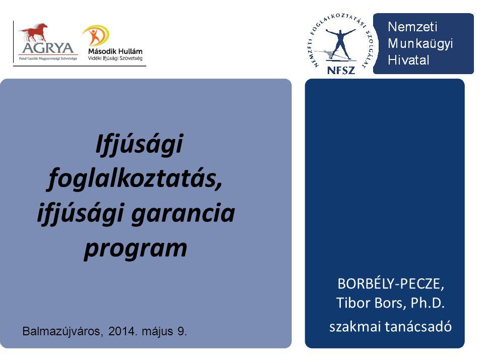 Ifjúsági foglalkoztatás, ifjúsági garancia program