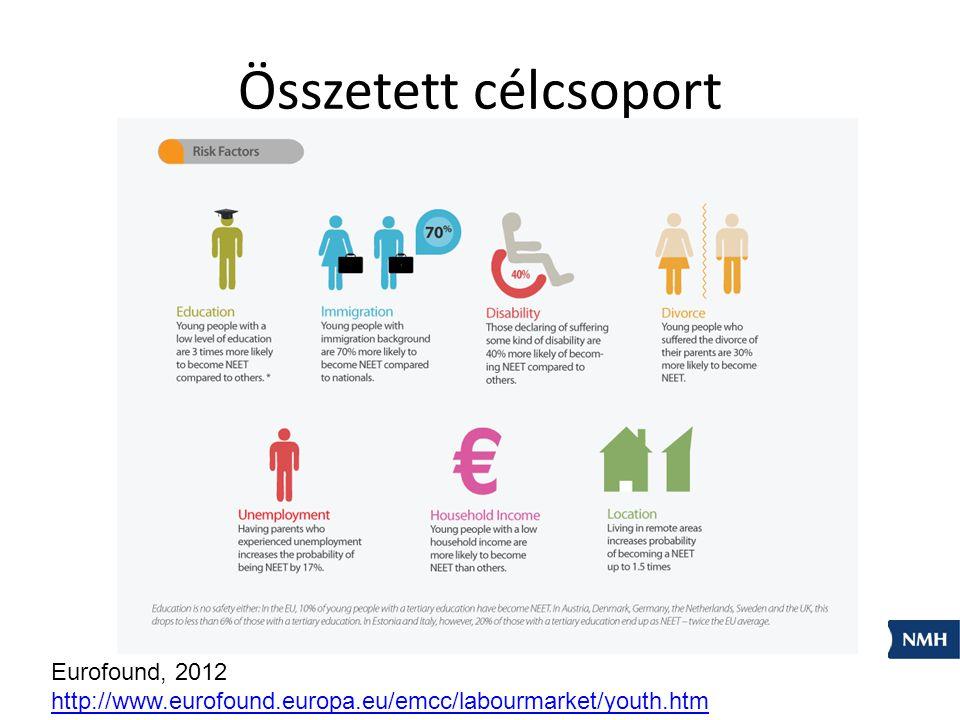 Összetett célcsoport Eurofound, 2012