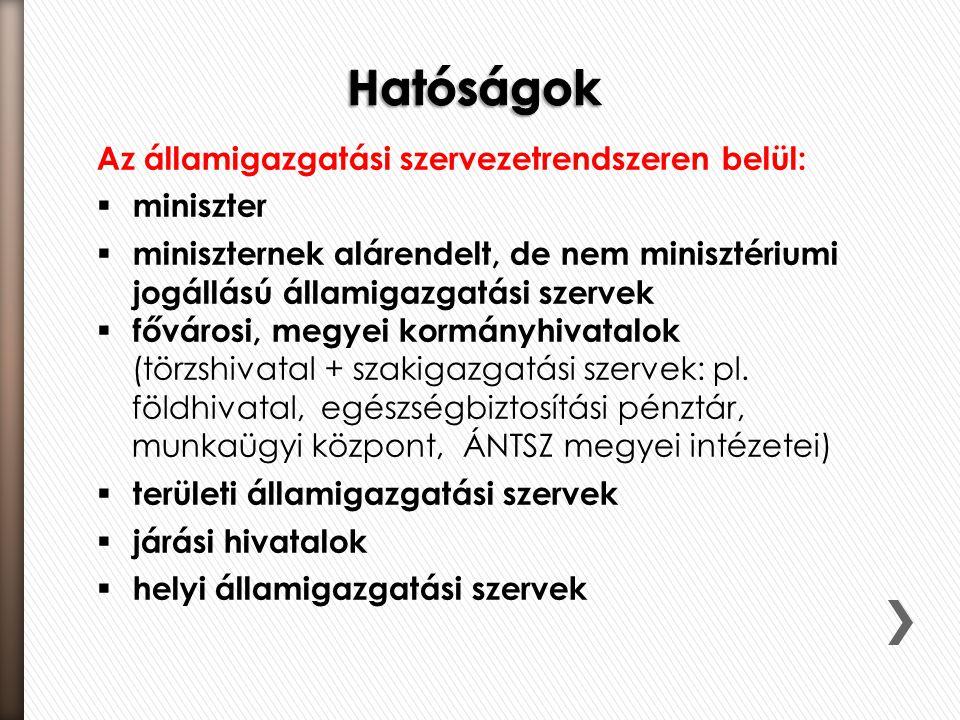 Hatóságok Az államigazgatási szervezetrendszeren belül: miniszter