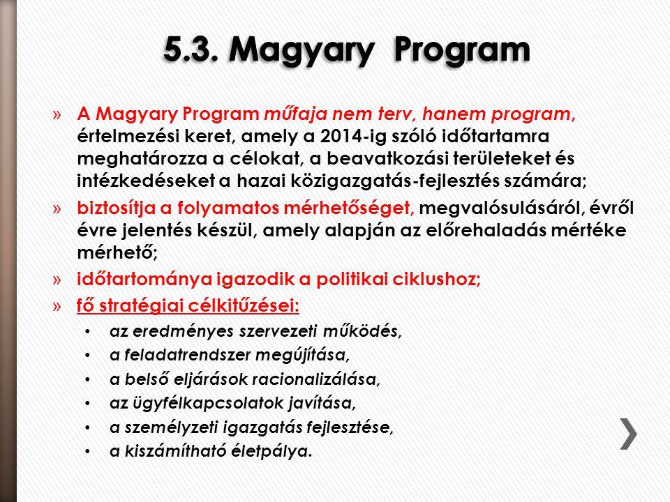 5.3. Magyary Program