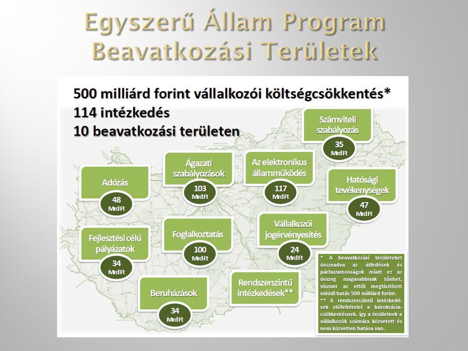 Egyszerű Állam Program Beavatkozási Területek