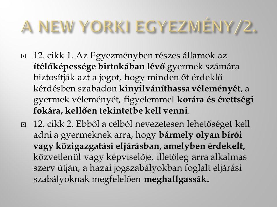 A NEW YORKI EGYEZMÉNY/2.