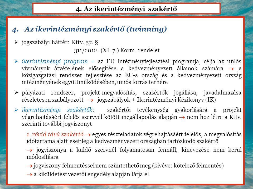 4. Az ikerintézményi szakértő