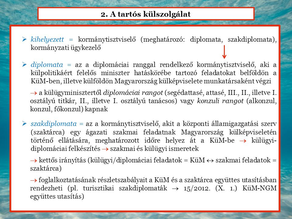 2. A tartós külszolgálat kihelyezett = kormánytisztviselő (meghatározó: diplomata, szakdiplomata), kormányzati ügykezelő.