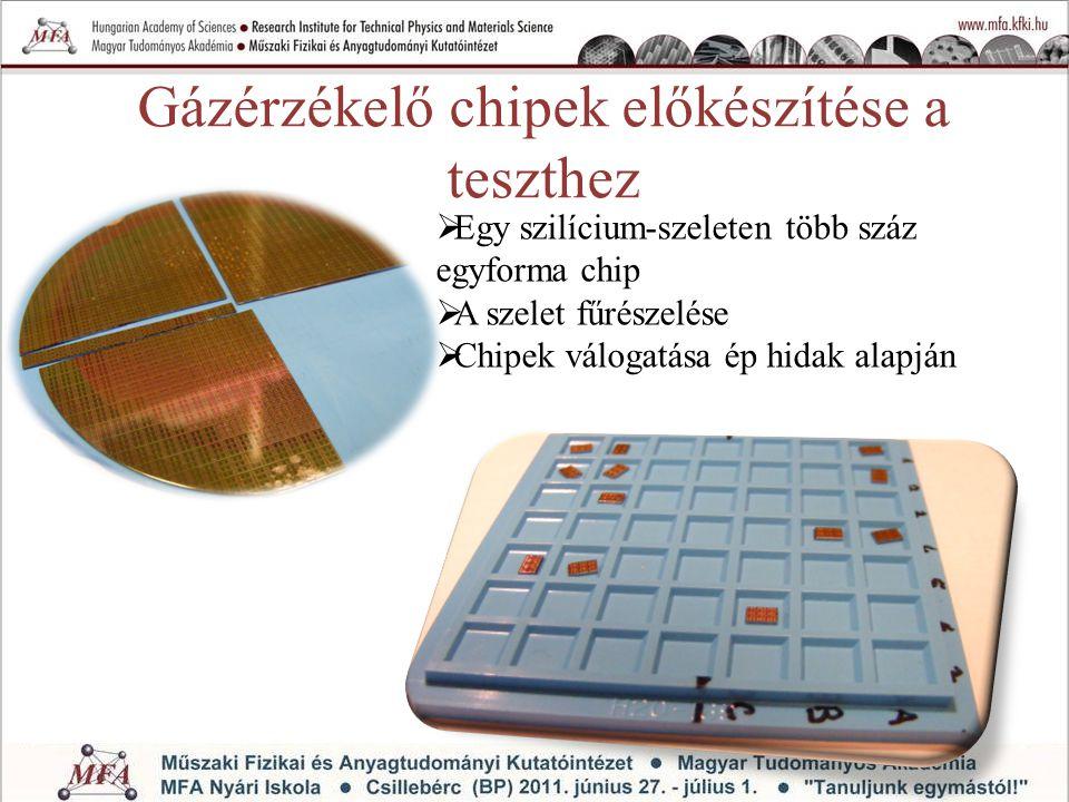 Gázérzékelő chipek előkészítése a teszthez