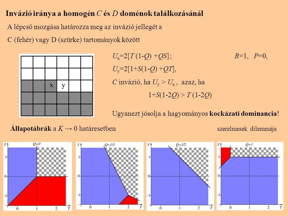 Invázió iránya a homogén C és D doménok találkozásánál