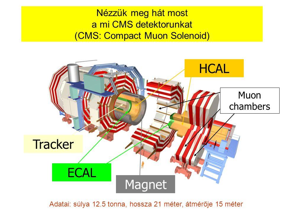 HCAL Tracker ECAL Magnet