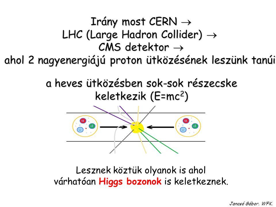 LHC (Large Hadron Collider)  CMS detektor 