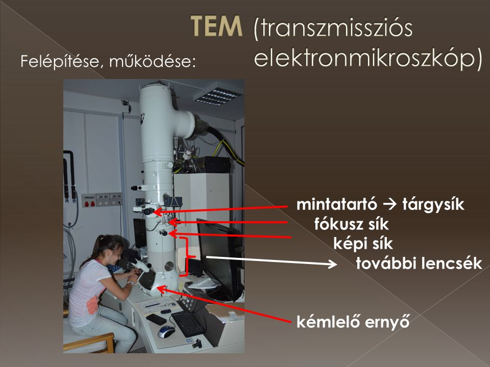 TEM (transzmissziós elektronmikroszkóp)