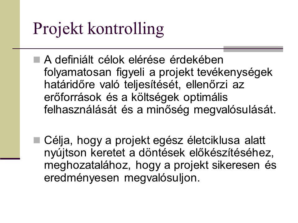 Projekt kontrolling