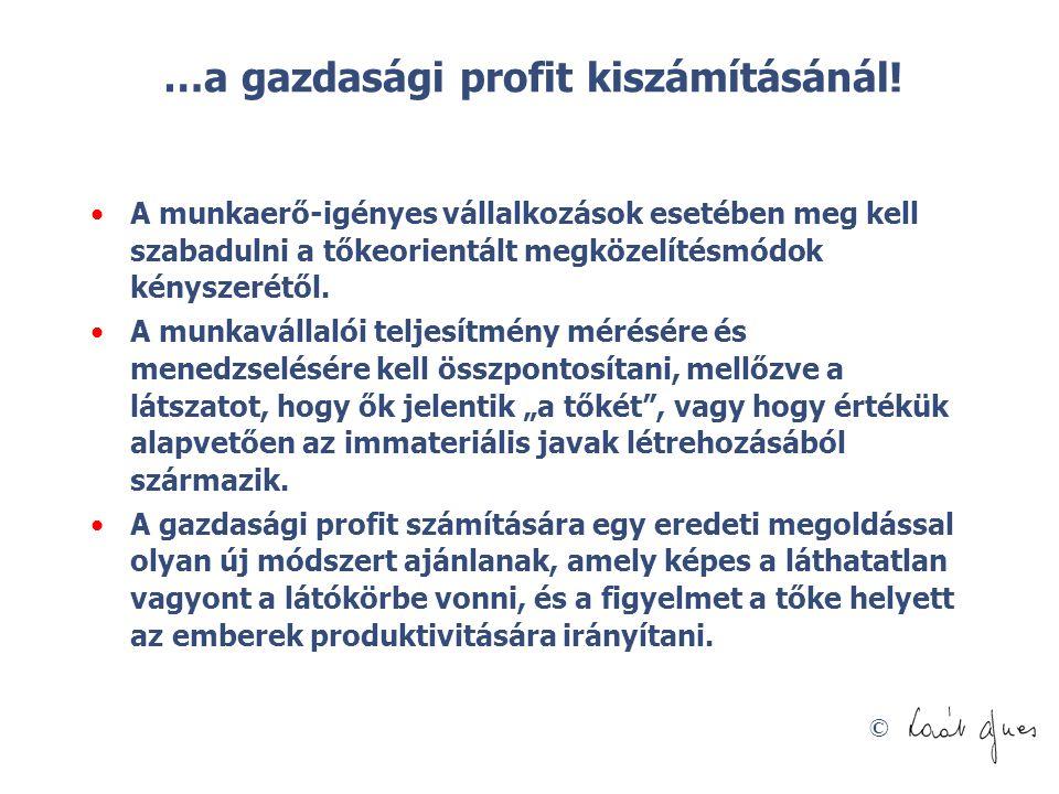 …a gazdasági profit kiszámításánál!