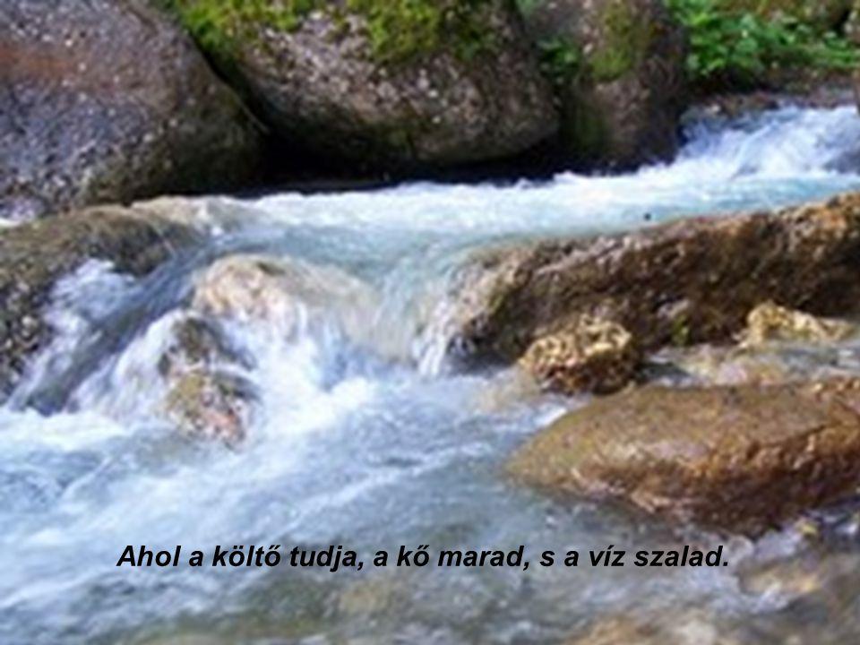 Ahol a költő tudja, a kő marad, s a víz szalad.