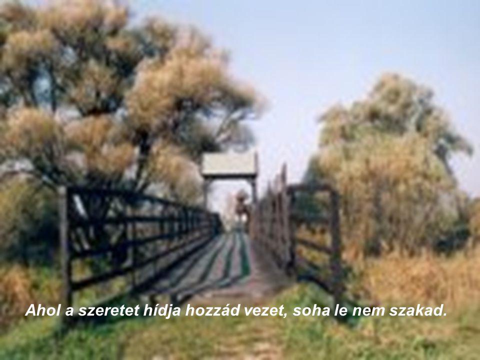 Ahol a szeretet hídja hozzád vezet, soha le nem szakad.