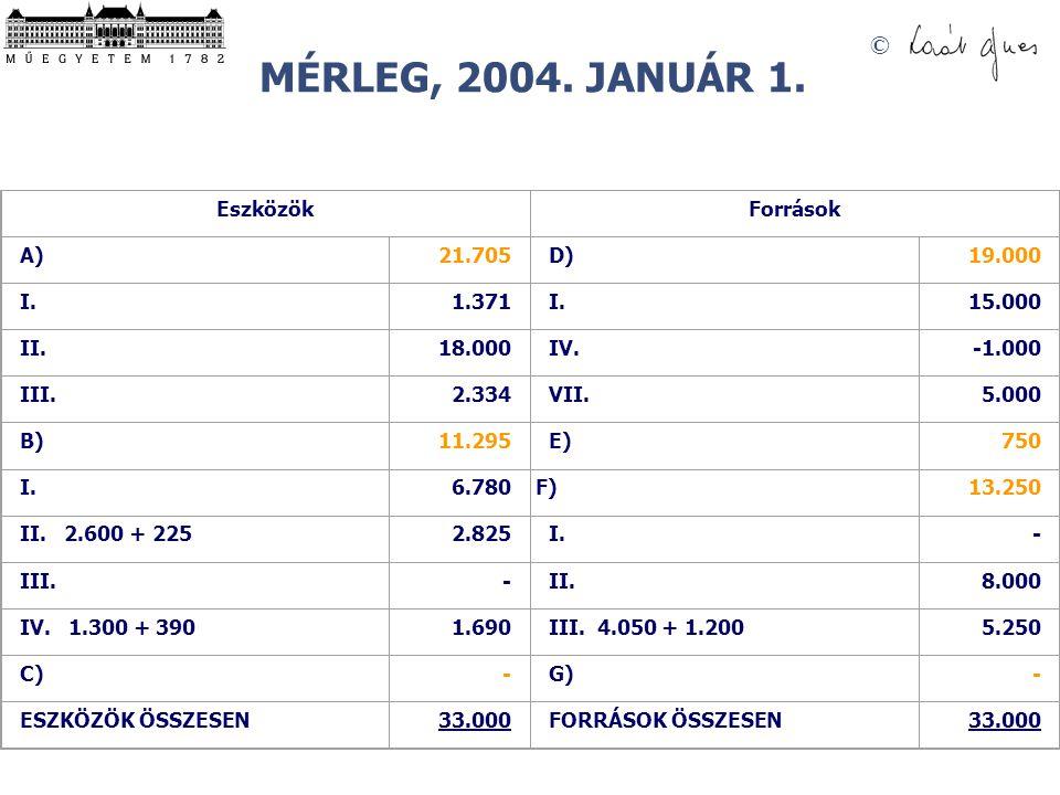 MÉRLEG, 2004. JANUÁR 1. Eszközök Források A) 21.705 D) 19.000 I. 1.371