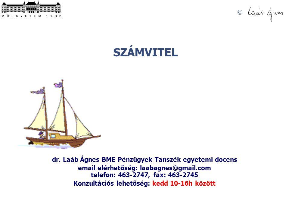 dr. Laáb Ágnes BME Pénzügyek Tanszék egyetemi docens