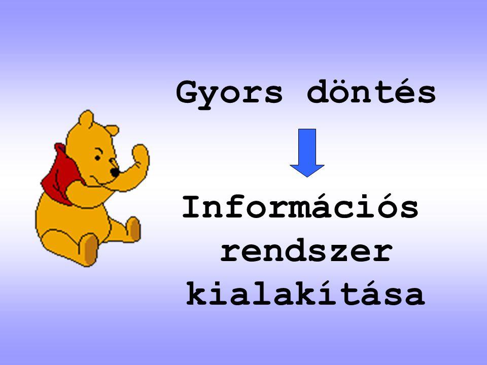 Információs rendszer kialakítása